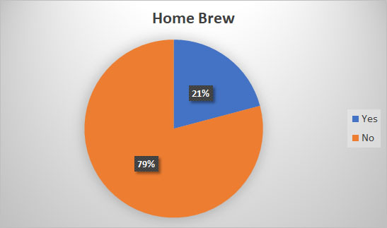 2019 Craft Beer Survey Home Brew