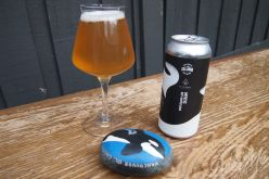 Vancouver Island Brewing and Ile Sauvage Brewing Collab- Mystic Dry-Hopped Sour