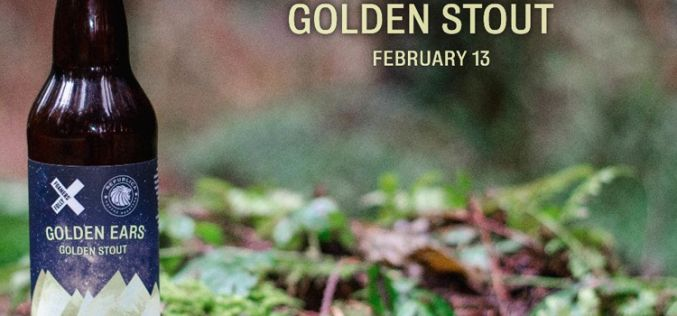 Foamers' Folly Brewing Releases Golden Ears Golden Stout