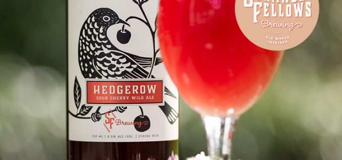 Strange Fellows' Limited Release of Hedgerow