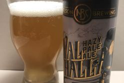 Nelson Brewing – Valhalla Hazy Pale Ale