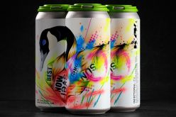 Launch of HYPHA Project: Beer, Art and Community