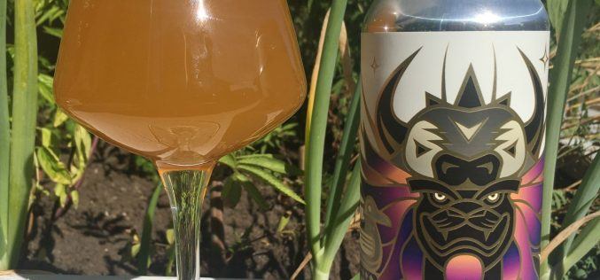 House of Funk Brewing Co.- Radegast Double Sour IPA