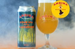 Halloween Treat from Andina Brewing – ¡PÁNICO! Sour IPA with Tangerine 🍊