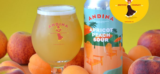 Andina Brewing's Sedosa 🍑 Apricot Peach Sour is Back!