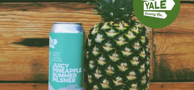 Old Yale Brewing Releases New Juicy Pineapple Summer Pilsner